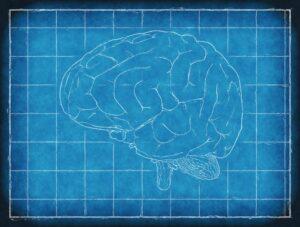 Urazy czaszkowo-mózgowe – duże niebezpieczeństwo o pozornie niewielkim rozmiarze